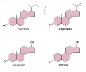 compare hormone molecules