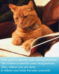 cat and book learning to be present